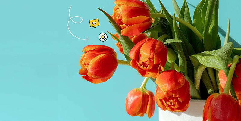 Adana Çiçek Dünyası