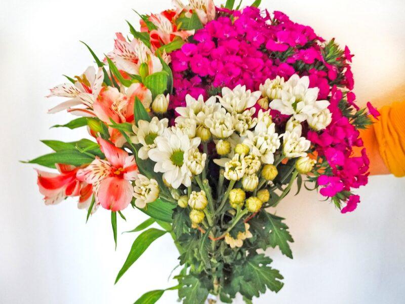 Küslük ve Kırgınlıklar İçin Çiçek Seçimi